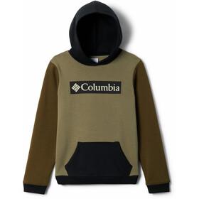 Columbia Park Hoodie Boys sage/new olive/black branded fill